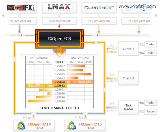FxOpen Business Model