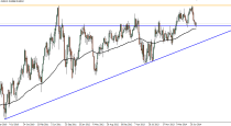 Forex Technical Analysis by Camilo R. (August 18-22)