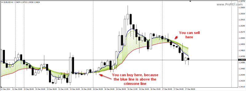 Forex trading strategies for dummies