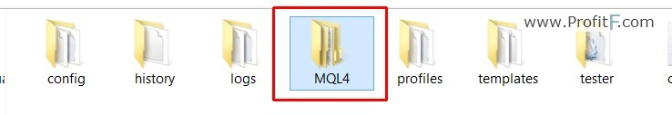 MQL4 Folder screen