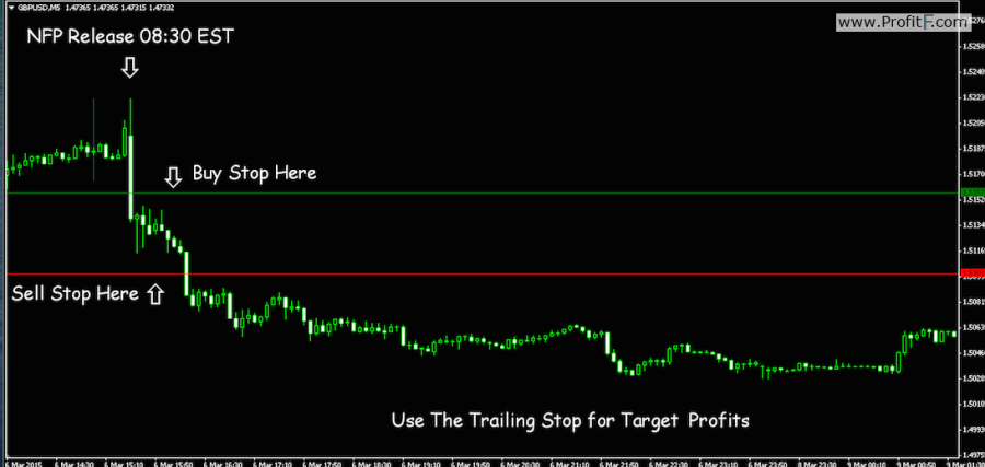 NFP strategy-1