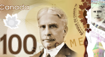 All about Canadian dollar