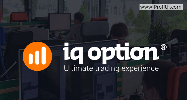Iq option live price