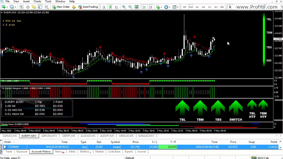 Forex executive manual trading system