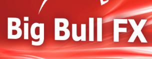 Big Bull FX robot