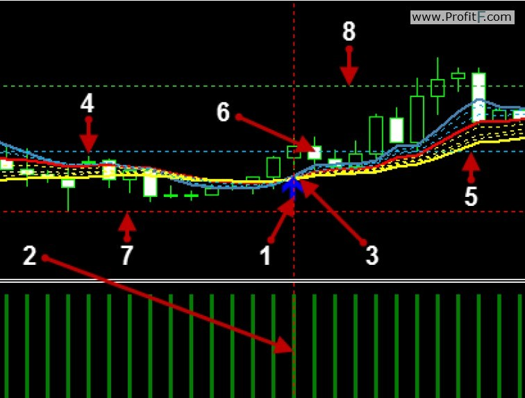 Double Profit Levels trading system rules