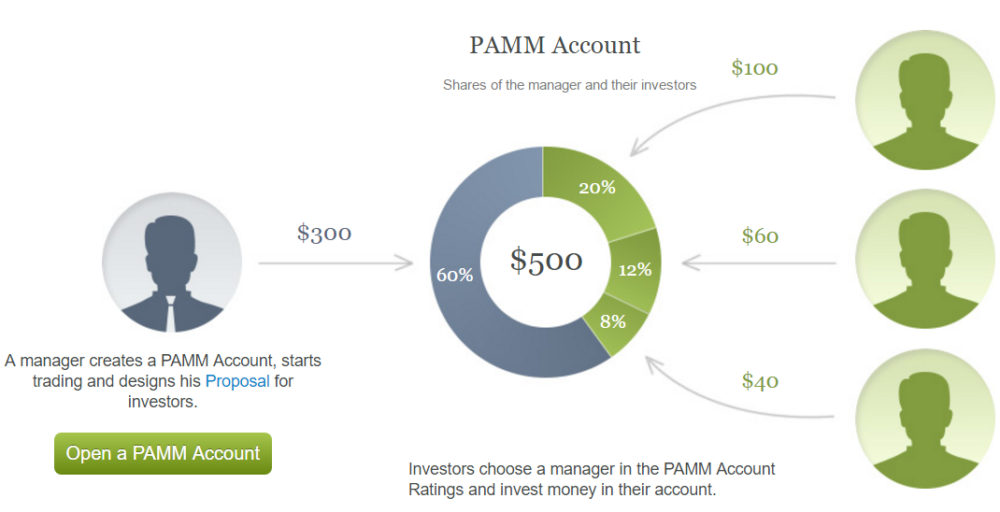 Best pamm forex accounts