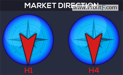 Market direction indicator FLC 1